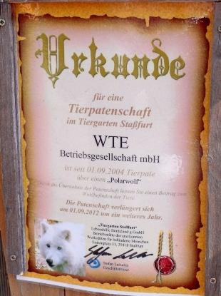 WTE und der einsamer Wolf (Photo: Mario Heide)